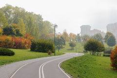 Carril de bicicleta en parque de la ciudad. Imagenes de archivo