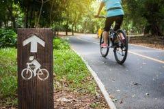 Carril de bicicleta en parque público Foto de archivo