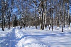 Carril de la nieve fotos de archivo