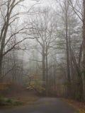 Carril de niebla en invierno Imagen de archivo libre de regalías