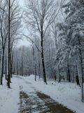 Carril del invierno Imágenes de archivo libres de regalías
