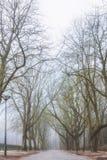Carril del invierno Foto de archivo libre de regalías
