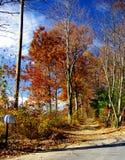 Carril del otoño Foto de archivo