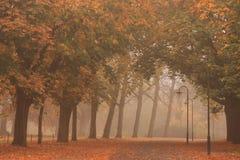 Carril del otoño Imagen de archivo libre de regalías