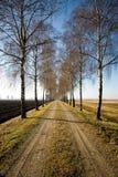 Carril del país, Alemania Imagen de archivo libre de regalías