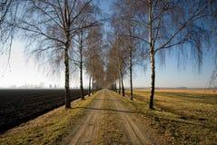 Carril del país, Alemania Imagenes de archivo
