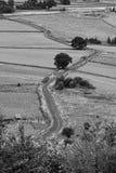 Carril del país del enrollamiento Foto de archivo libre de regalías