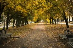 Carril del parque en caída Imagen de archivo libre de regalías