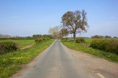 Carril del país en primavera Imagen de archivo