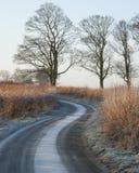 Carril escarchado del invierno foto de archivo libre de regalías