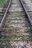 Carriles viejos de la tranvía, primer, otoño del verano, entre los durmientes hierba, grava y piedras en la ciudad foto de archivo libre de regalías
