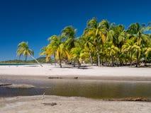 Carrillo strand i det near av samaraen Arkivbilder