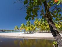Carrillo strand i det near av samaraen Arkivfoton