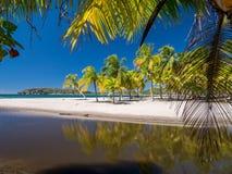 Carrillo strand i det near av samaraen Fotografering för Bildbyråer