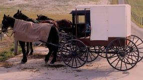 Carrinho de Amish fotos de stock