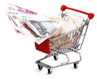 Carrinho de compras com o euro isolado no branco Fotografia de Stock
