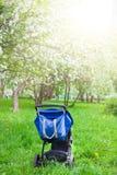 Carrinho de criança de bebê no jardim de florescência fotos de stock royalty free