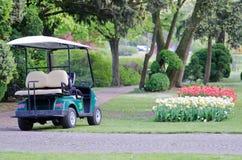 Carrinho de golfe ao parque SigurtàItália fotografia de stock