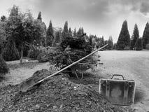 Carrinho de mão com desperdício do jardim em um parque Imagem de Stock Royalty Free