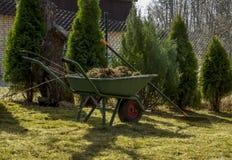 Carrinho de mão enchido com as ervas daninhas Fotografia de Stock Royalty Free