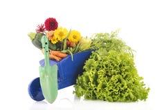 Carrinho de mão de roda de madeira com vegetais Fotografia de Stock Royalty Free