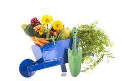 Carrinho de mão de roda de madeira com vegetais Fotografia de Stock
