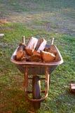 Carrinho de mão velho completamente das madeiras na grama verde imagem de stock