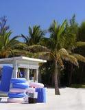 Carrinho do beira-mar de Florida foto de stock royalty free