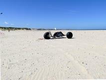 Carrinho do papagaio na praia imagem de stock royalty free