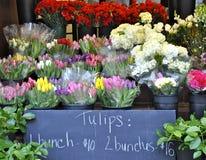 Carrinho do Tulip Fotografia de Stock
