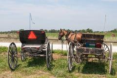 Carrinhos de Amish imagem de stock royalty free