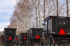 Carrinhos de Amish imagens de stock royalty free