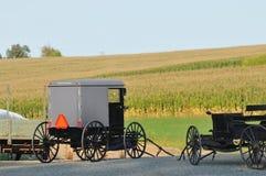 Carrinhos de Amish no campo de Pensilvânia fotografia de stock royalty free