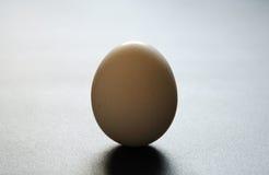 Carrinhos de ovo Imagem de Stock