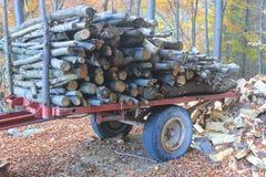 Carriola con i tronchi di legno fotografia stock libera da diritti
