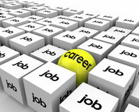 Carrière versus Job Sphere Cubes Work Opportunity-de Groeiontwikkeling Stock Afbeeldingen
