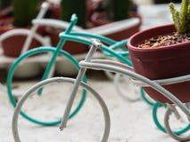 Carritos de la bicicleta con la maceta del cactus Fotos de archivo libres de regalías