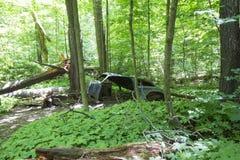 Carro abandonado velho na floresta fotografia de stock royalty free
