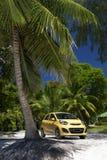 Carro amarelo estacionado sob a palmeira brilhante Imagem de Stock Royalty Free