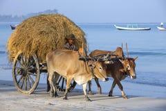 Praia de Ngapali - Myanmar fotos de stock royalty free