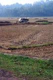 Carro cargado heno en el medio de la granja de la agricultura Imagen de archivo libre de regalías