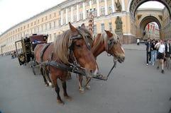Carro cerca de la ermita en St Petersburg Fotos de archivo libres de regalías