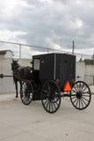 Carro com um cavalo imagens de stock royalty free