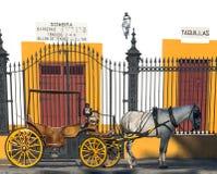 Carro com um cavalo Fotos de Stock Royalty Free