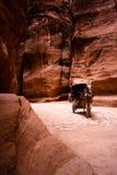 Carro con el caballo en Siq - Petra Foto de archivo
