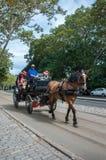 Carro con el caballo marrón en el Central Park, New York City EE.UU. fotos de archivo