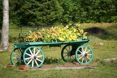 Carro con las flores Imagen de archivo libre de regalías