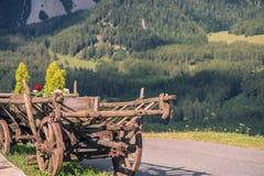 Carro con las flores en un fondo de montañas Fotos de archivo