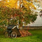 Carro con las hojas Fotografía de archivo libre de regalías