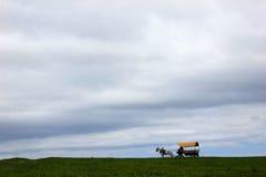 Carro con un caballo Imágenes de archivo libres de regalías